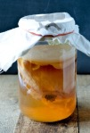 Scoby-Hotel-Diptych-1-Cropped